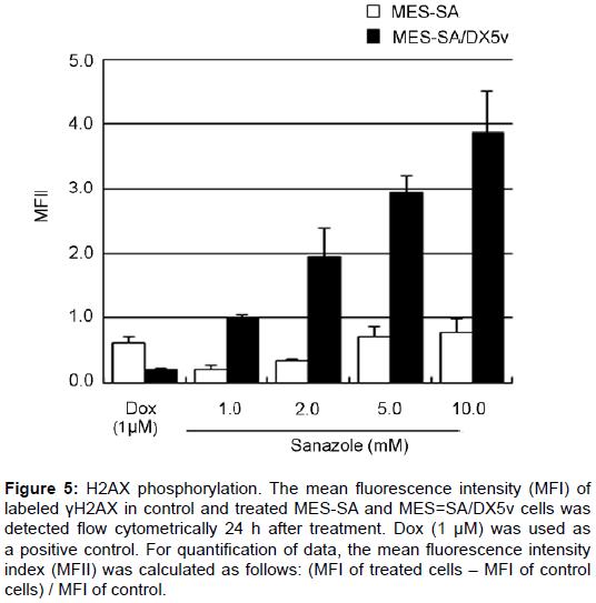 pharmaceutica-analytica-acta-H2AX-phosphorylation