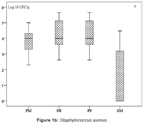 pharmaceutica-analytica-acta-Staphylococcus-aureus