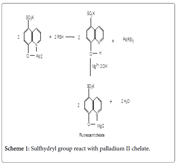pharmaceutica-analytica-acta-Sulfhydryl-group
