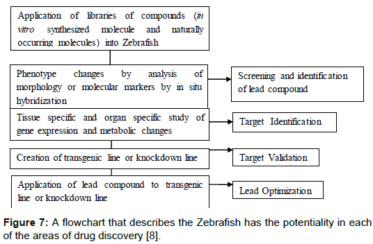 pharmaceutica-analytica-acta-Zebrafish-potentiality