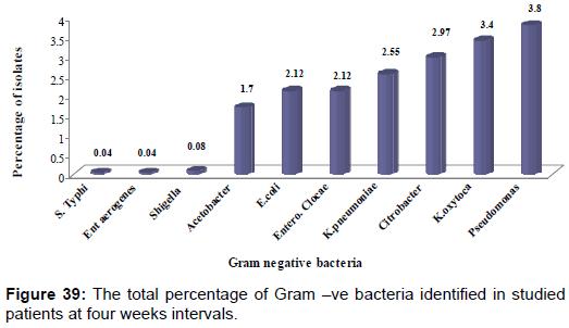 pharmaceutica-analytica-acta-bacteria-identified-studied