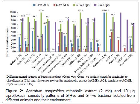 pharmaceutica-analytica-acta-bacteria-isolated
