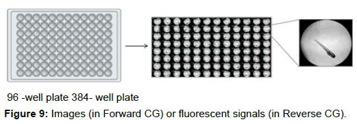 pharmaceutica-analytica-acta-fluorescent-signals