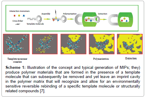 the use of molecularly imprinted polymers for dermal drug delivery