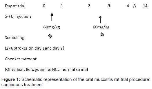 pharmaceutica-analytica-acta-oral-mucositis-rat