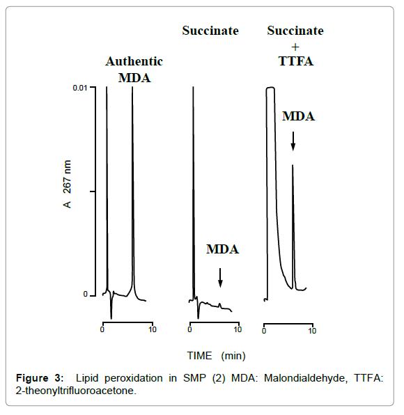 pharmaceutica-analytica-acta-theonyltrifluoroacetone