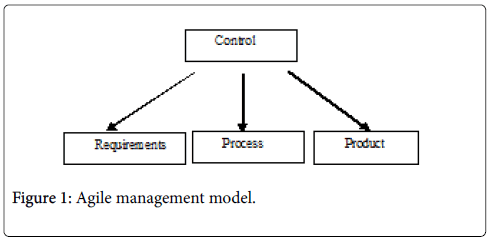 pharmaceutical-regulatory-affairs-Agile-management