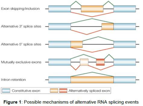 pharmacogenomics-pharmacoproteomics-Possible-mechanisms