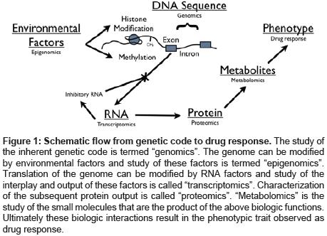 pharmacogenomics-pharmacoproteomics-Schematic-flow