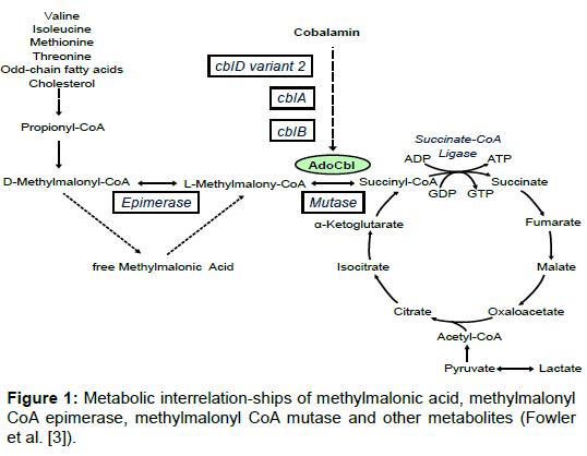 pharmacogenomics-pharmacoproteomics-interrelation-ships