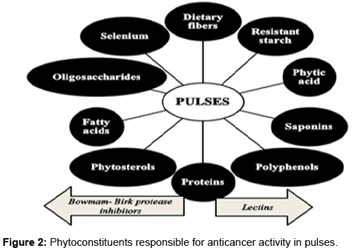 pharmacognosy-natural-products-Phytoconstituents-responsible-anticancer