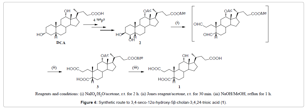 pharmacognosy-natural-products-Synthetic-route