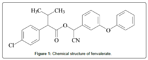 physical-chemistry-Chemical-structure