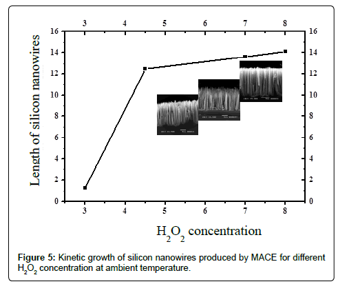 physical-chemistry-biophysics-Kinetic-growth-silicon-nanowires