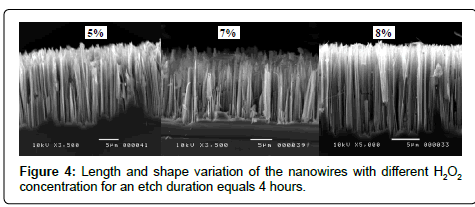 physical-chemistry-biophysics-Length-shape-variation-nanowires
