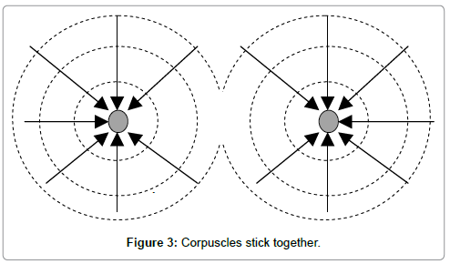physical-mathematics-Corpuscles-stick-together