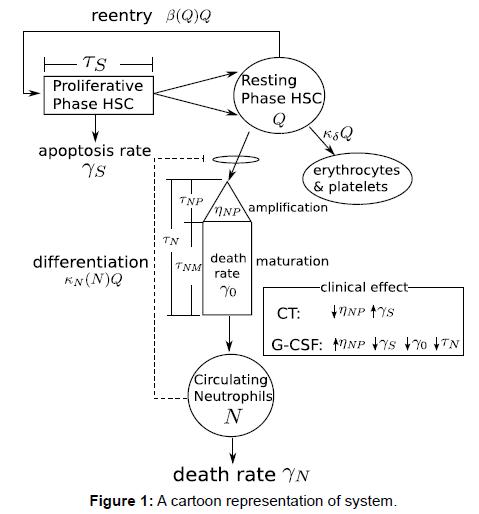 physical-mathematics-cartoon-representation-system