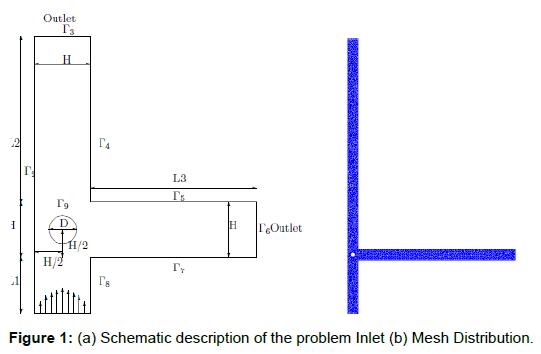 physical-mathematics-description-problem-mesh