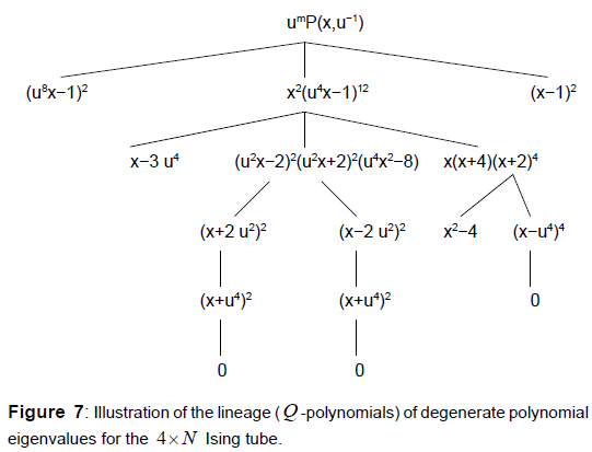 physical-mathematics-lineage-degenerate-polynomial