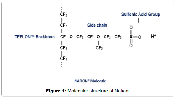 Matlab Source Code for Species Transport through Nafion Membranes in