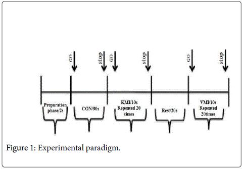 physical-medicine-Experimental-paradigm