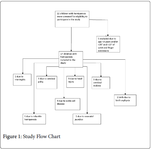 physical-medicine-Study-Flow-Chart