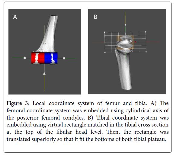 physical-medicine-rehabilitation-coordinate-system