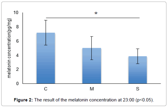 physiotherapy-physical-melatonin-concentration