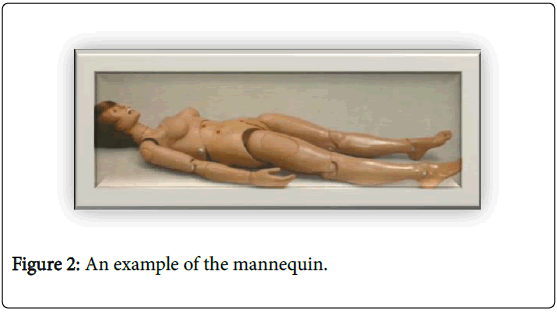 physiotherapy-physical-rehabilitation-example-of-the-mannequin