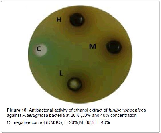 plant-pathology-microbiology-Antibacterial-activity-ethanol