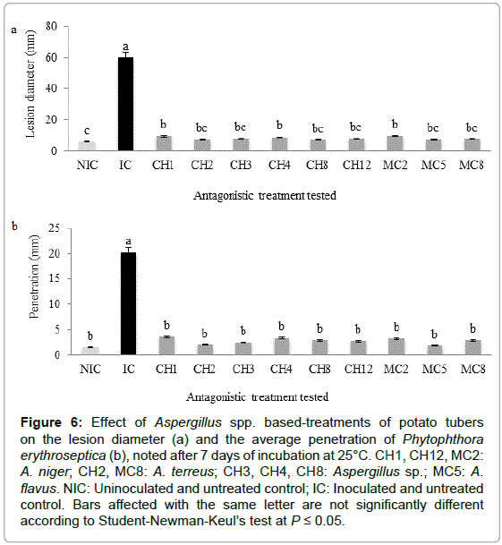 plant-pathology-microbiology-Aspergillus-based-treatments