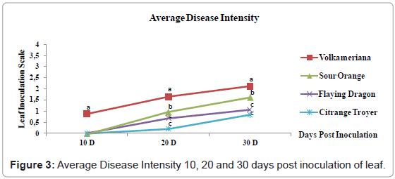 plant-pathology-microbiology-Average-Disease-Intensity