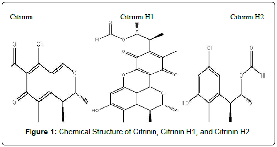 plant-pathology-microbiology-Chemical-Structure-Citrinin