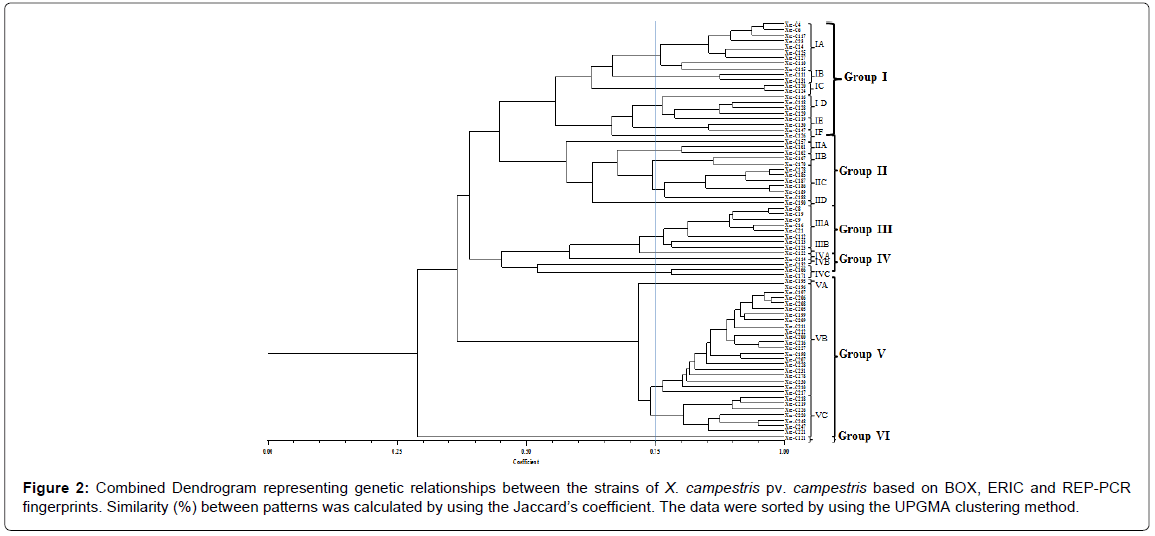plant-pathology-microbiology-Combined-Dendrogram-genetic