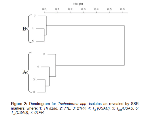 plant-pathology-microbiology-Dendrogram-Trichoderma