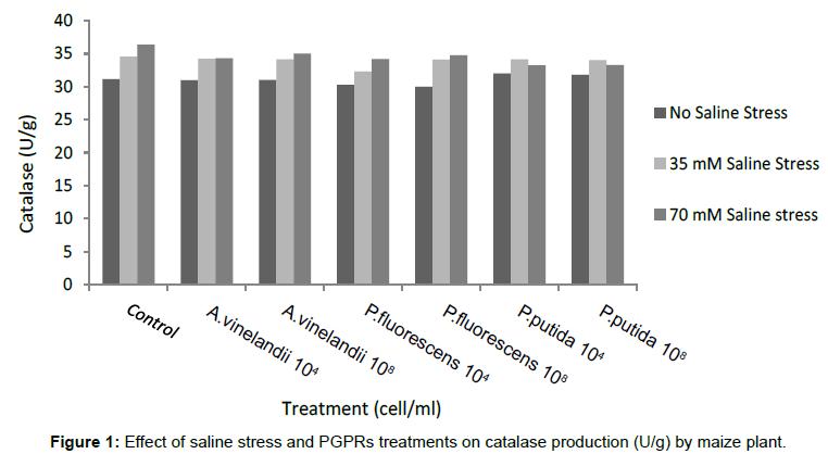 plant-pathology-microbiology-Effect-saline-stress