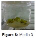 plant-pathology-microbiology-Media
