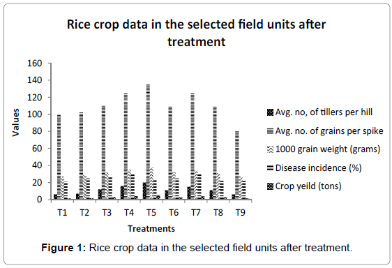 plant-pathology-microbiology-Rice-selected-treatment