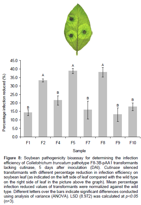 plant-pathology-microbiology-Soybean-pathogenicity