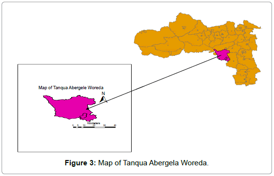 plant-pathology-microbiology-Tanqua-Abergela-Woreda