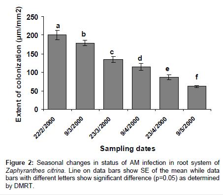 plant-pathology-microbiology-Zaphyranthes-citrina