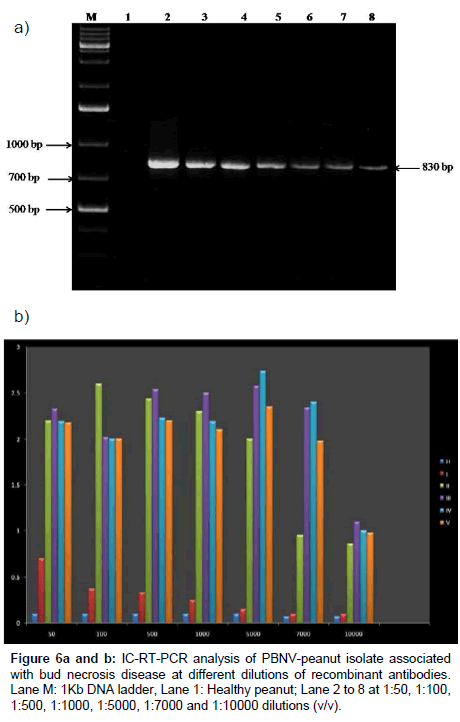 plant-pathology-microbiology-bud-necrosis-disease