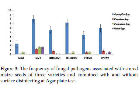 plant-pathology-microbiology-fungal-pathogens