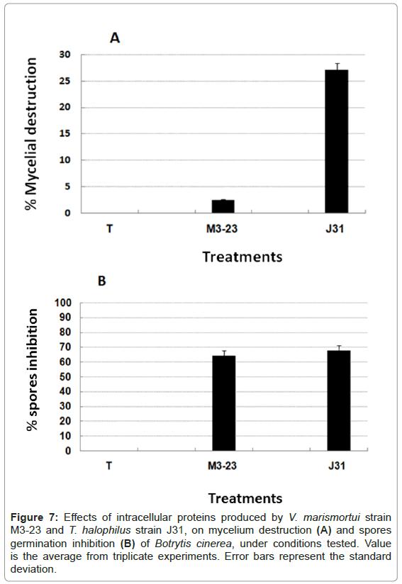 plant-pathology-microbiology-intracellular-proteins-marismortui