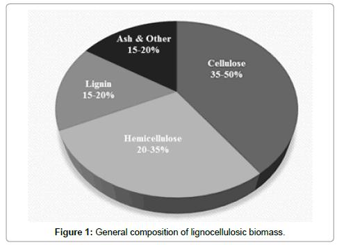 plant-pathology-microbiology-lignocellulosic-biomass