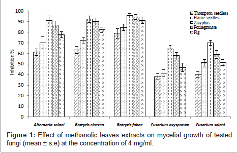plant-pathology-microbiology-methanolic-leaves