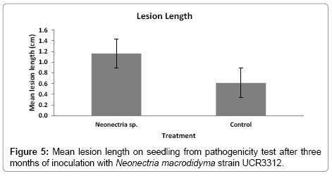 plant-pathology-microbiology-pathogenicity-test