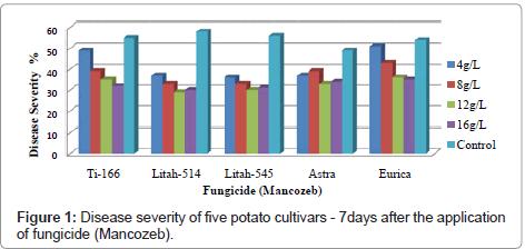 plant-pathology-microbiology-potato-cultivars