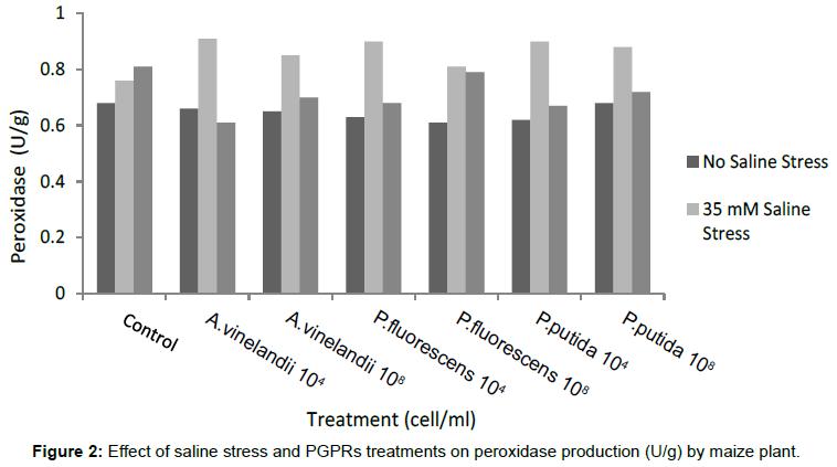 plant-pathology-microbiology-saline-stress-peroxidase