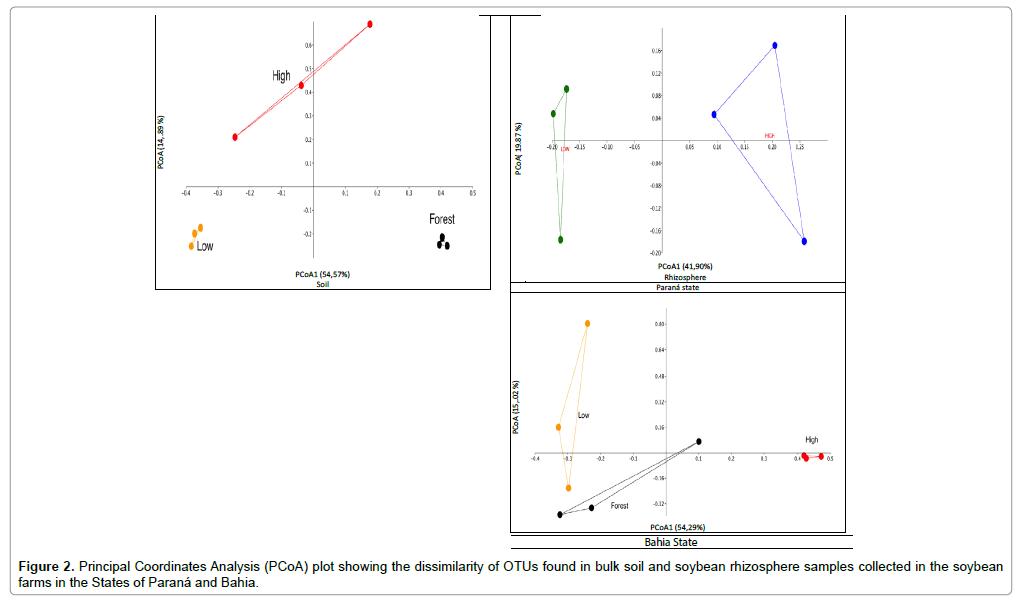 plant-pathology-microbiology-soil-soybean-rhizosphere
